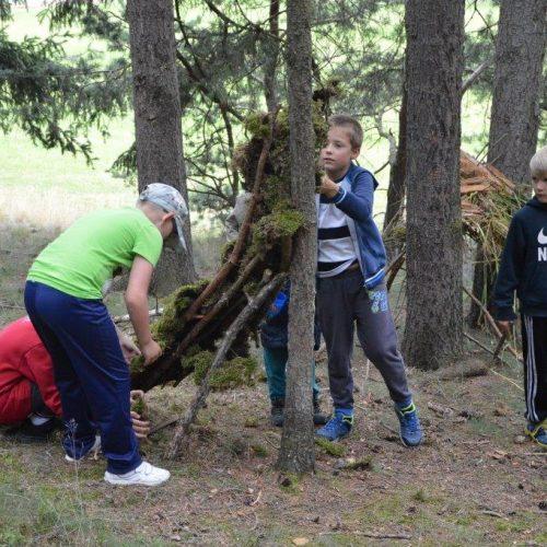 Sběr borůvek byl místy doplněn stavbou lesních domků.